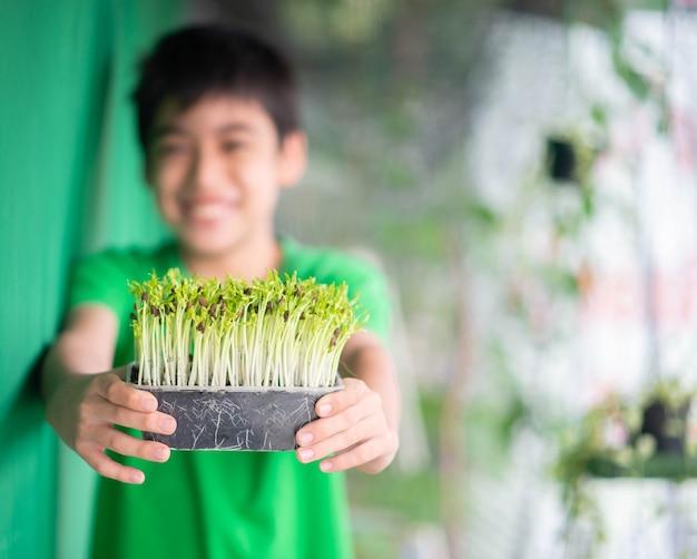 Маленький мальчик сажает микро-зеленый росток ипомеи в домашнем саду Premium Фотографии