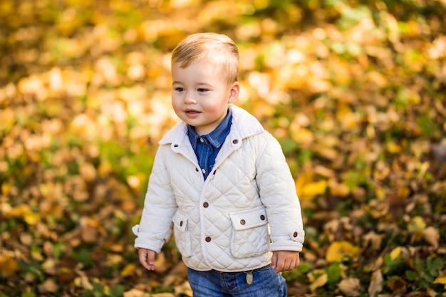 Маленький мальчик играет в желтой листве. осень в городском парке юноша. Бесплатные Фотографии