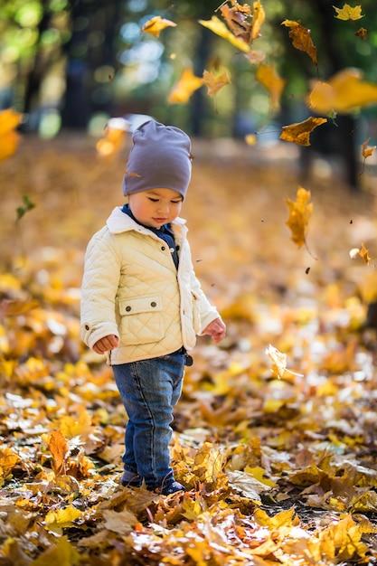 Ragazzino che gioca e che lancia le foglie nella sosta di autunno Foto Gratuite