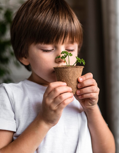 Little boy smelling plant in pot at home Free Photo