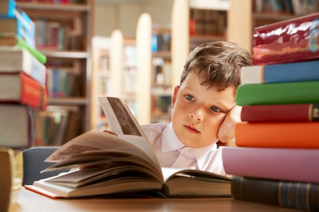 Little boy studying in the library Free Photo