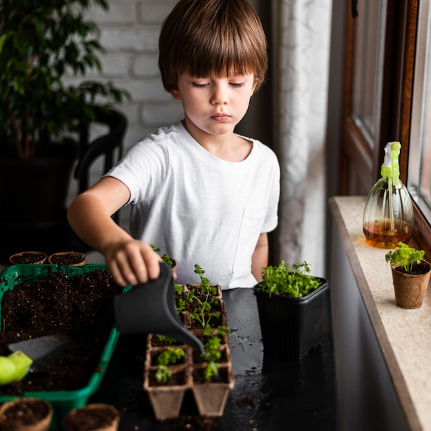 Little boy watering crops at home Free Photo