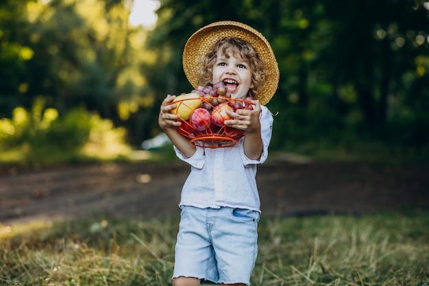 피크닉에 숲에 포도와 어린 소년 무료 사진