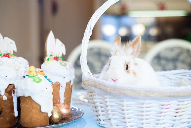 飾られた卵とバスケットの小さなウサギ-イースターカード。 Premium写真