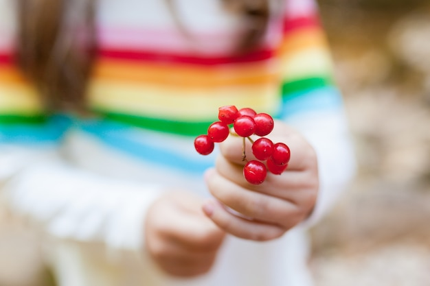 Little child girl holding a rowan branch in her hands. focus on the foreground. seasonal autumn berries Premium Photo