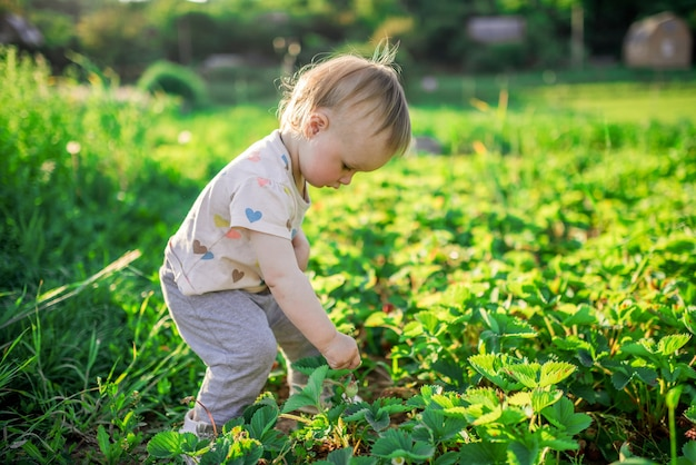 Little child plays on the green field with bugs Free Photo