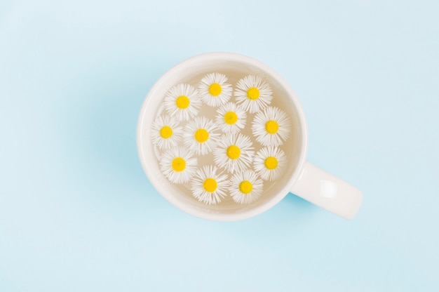 Little daisy flowers in a cup Premium Photo