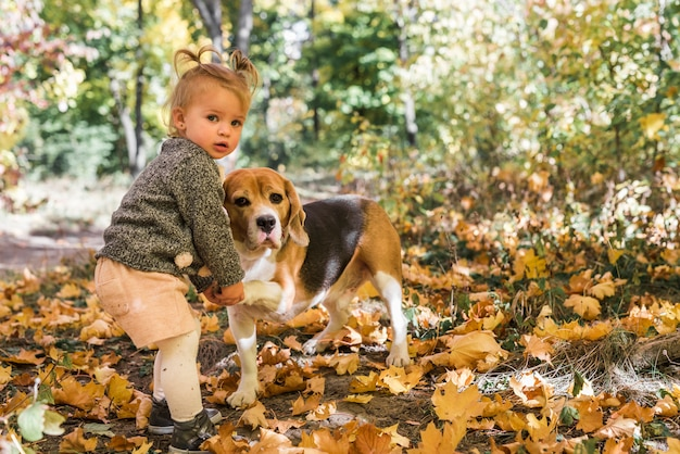 Little girl doing handshake with beagle dog in forest Free Photo