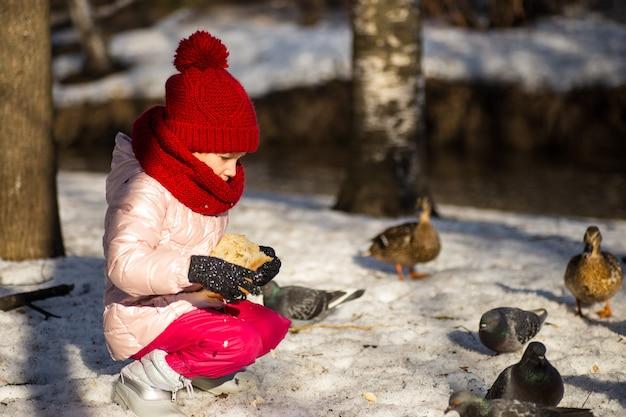 冬にアヒルに餌をやる少女 Premium写真