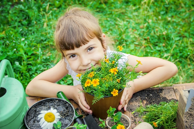 A little girl is planting flowers. the young gardener. selective focus. Premium Photo