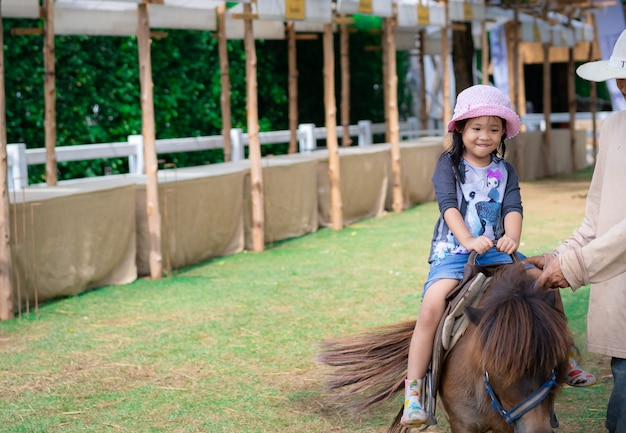 Little girl learning to ride horse Premium Photo
