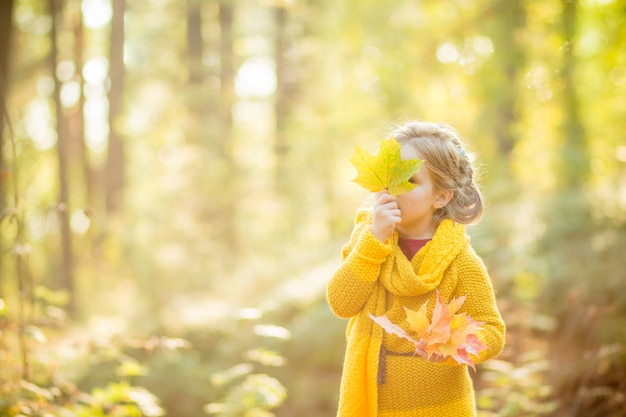 Little girl looking out from behind a bouquet of autumn leaves. childhood time. little girl is hiding over yellow leaf in the autumn park.copyspace Premium Photo