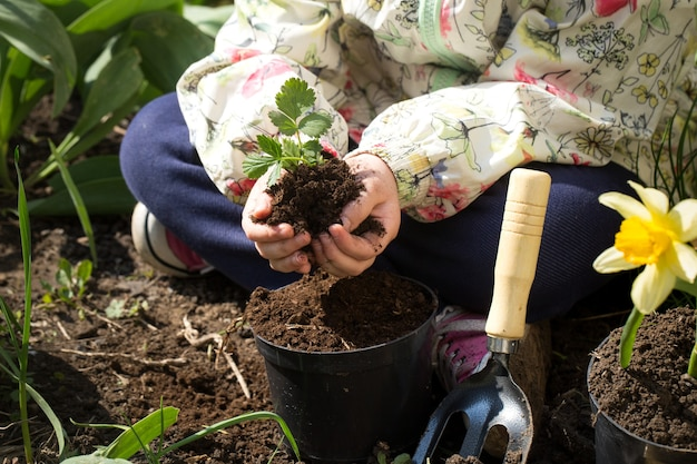 Little girl planting flowers in the garden Free Photo