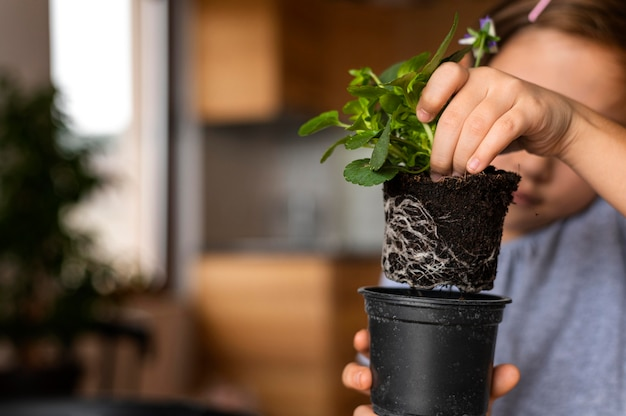 Little girl planting flowers in pot at home Premium Photo