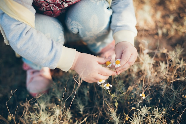 Little girl touches the daisies in the field in spring Premium Photo