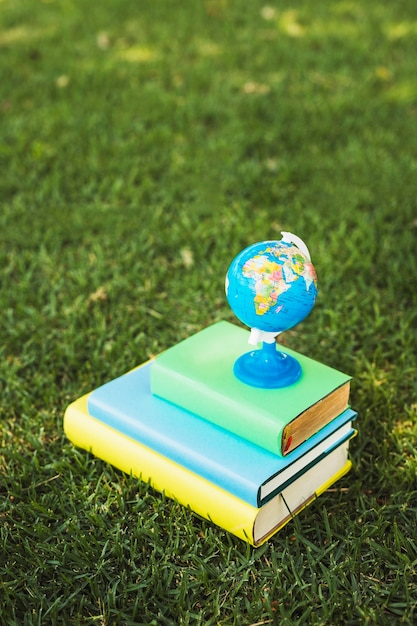 Little globe composed on pile of books Free Photo