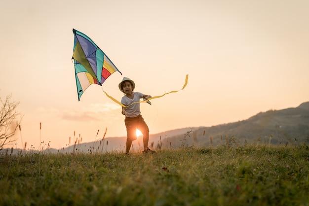 Little kid with kite on meadow Premium Photo