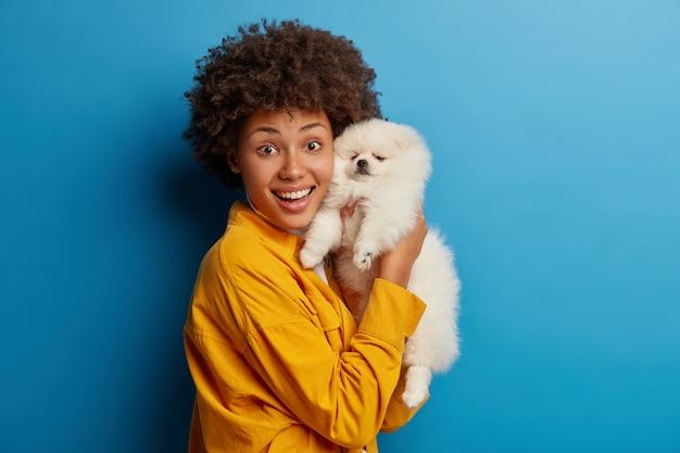 Piccolo animale domestico di razza si riposa a casa nelle mani della donna. il proprietario di un animale felice posa con il suo nuovo amico, felice dopo aver esaminato il veterinario che il cane è sano Foto Gratuite
