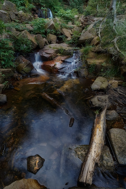 A little river flowing between rocks surrounded by foliage at a natural park in spain Premium Photo