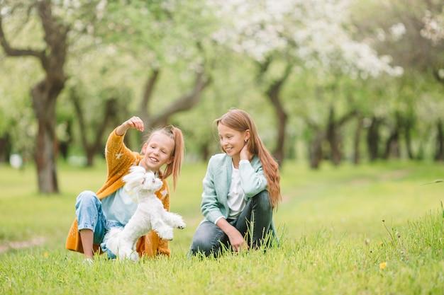 Маленькие улыбающиеся девочки играют и обнимают щенка в парке Premium Фотографии