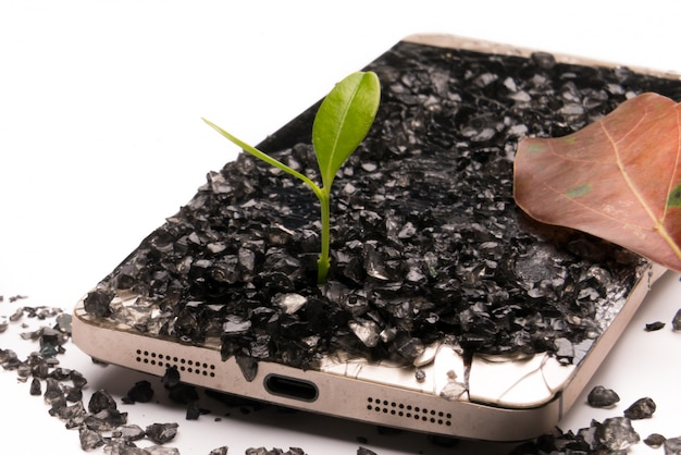 Little tree growing on broken smartphone, environment, knowledge and innovation Premium Photo