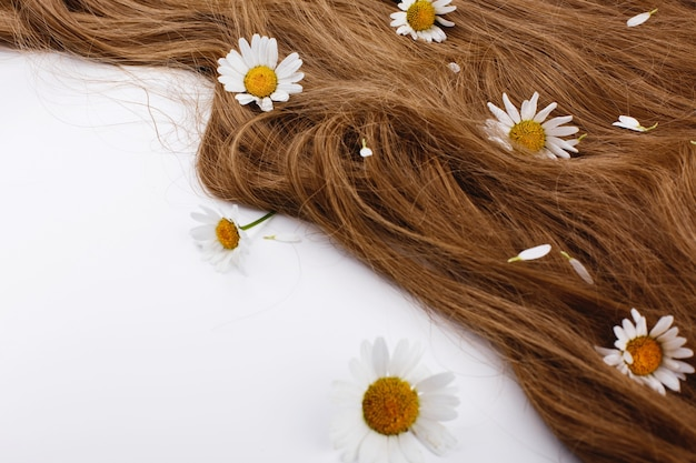 Little white flowers lie on the brown hair curls Free Photo