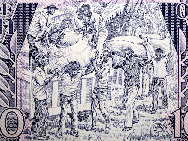Loading produce from old ghanaian money Premium Photo