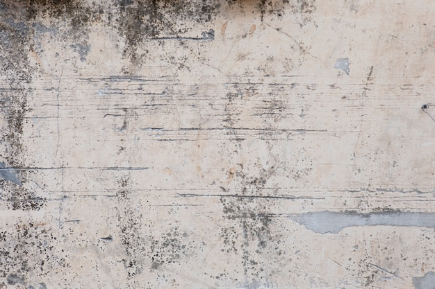 Loft-style plaster walls, gray, white, empty space used as wallpaper. popular in home Premium Photo