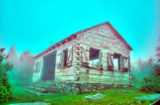 Log cabin in forest Free Photo