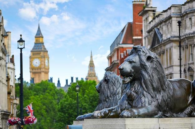 London trafalgar square lion in uk Premium Photo
