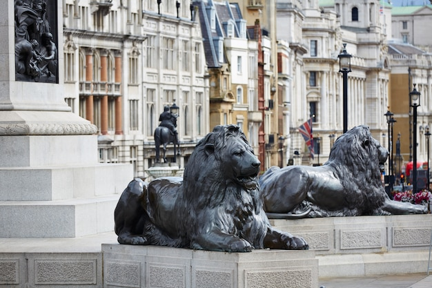 London trafalgar square in uk Premium Photo