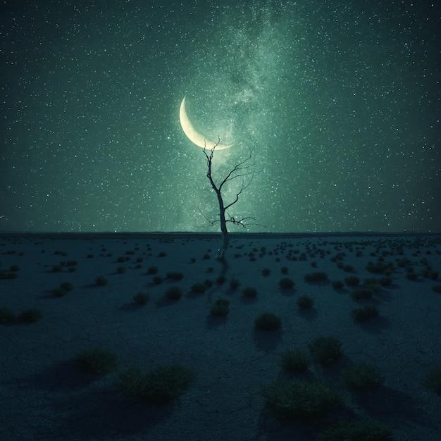 夜の風景、上の星と月、気候変動の砂漠の孤独な乾燥した木。ヴィンテージ様式、レトロなフィルムフィルター Premium写真