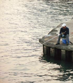 Lonesome fishing Free Photo