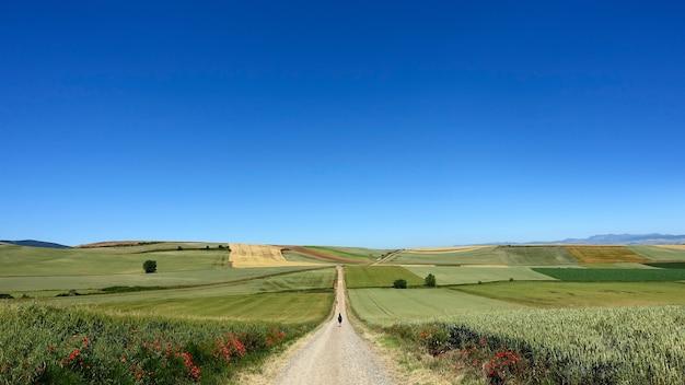 맑고 화창한 날에 시골 농장으로 이어지는 긴 비포장 도로 무료 사진