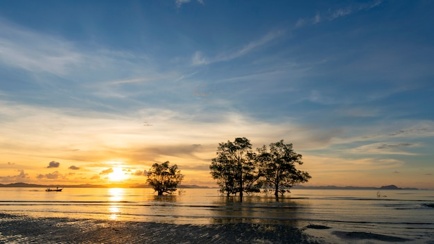 Long exposure image of dramatic sunset or sunrise sky and clouds over mountain with trees in the sea Premium Photo