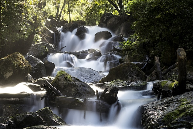 Long exposure shot of the waterfall surrounded by trees Free Photo