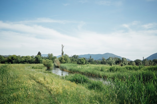 Long shot of green pasture with water stream Free Photo