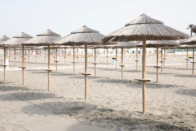 Long shot of palm umbrellas onin tropical resort beach Free Photo