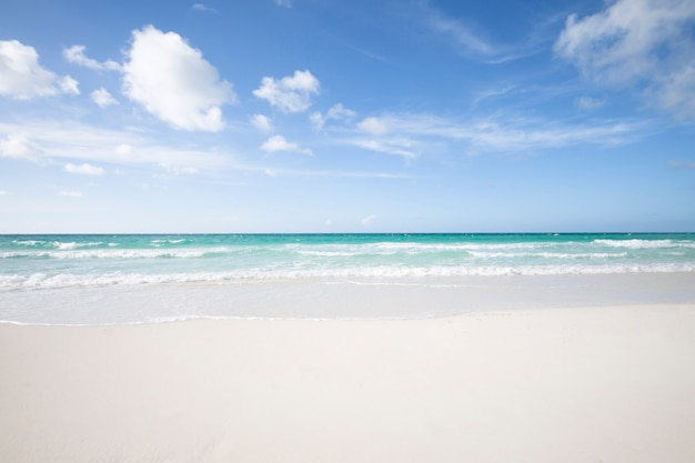 Long shot of tropical sandy beach Free Photo
