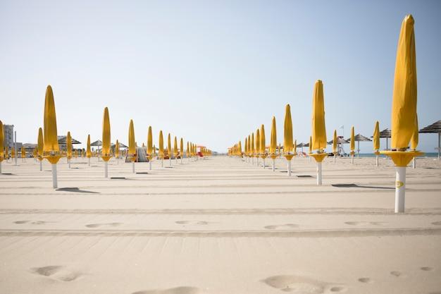 Long shot of umbrellas at resort beach Free Photo