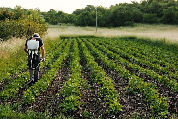 Long shot working agricultor Free Photo