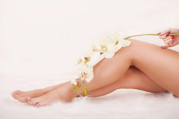 Long woman's legs holding beautiful flowers Premium Photo