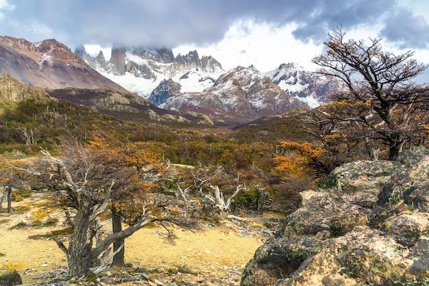 Los glaciares national park, santa cruz province, patagonia, argentina Premium Photo
