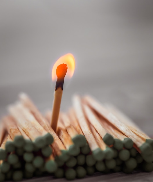 Lot of green matches and one red, leadership, light Free Photo