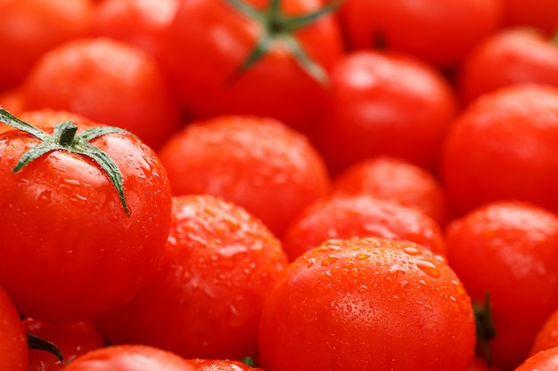 Lots of fresh ripe tomatoes with drops of dew. Premium Photo