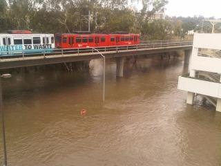 Lots of rain in san diego Free Photo