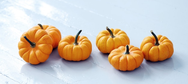 Lots of small pumpkins Free Photo