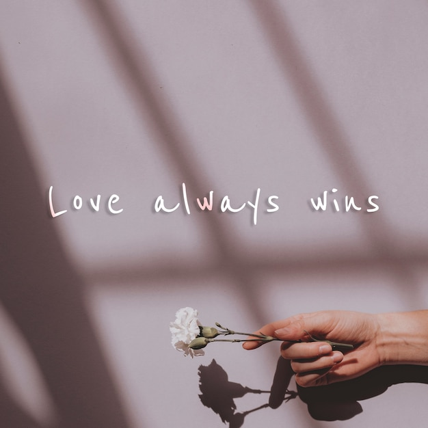Love always wins quote on a wall and hand holding flower Free Photo