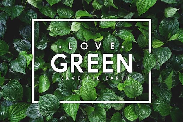 地球の概念が大好きです。緑の葉の背景 Premium写真