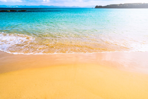 Lovely summer beach Free Photo
